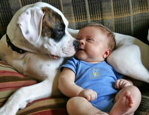 FB Baby and dog CD