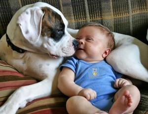FB Baby and dog CD