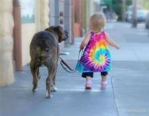 Tie Dye Toddler walking dog