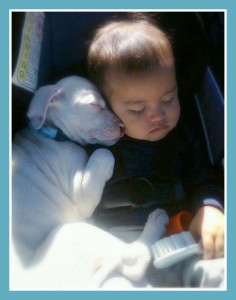FB Baby sleeping with pittie car seat