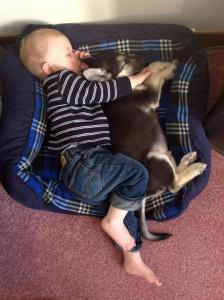 FBAR Baby sleeping with puppy thumb 2013