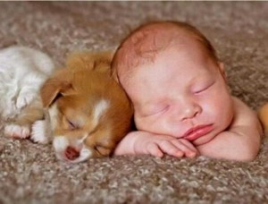 FBAR Newborn Sleeping Puppy Rug