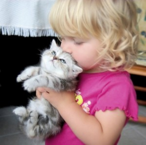 bfb animals blond toddler with kitten