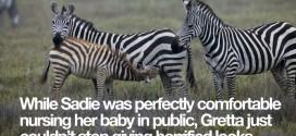 Breastfeeding Blunders