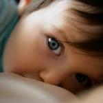 BFB Nursing Toddler II