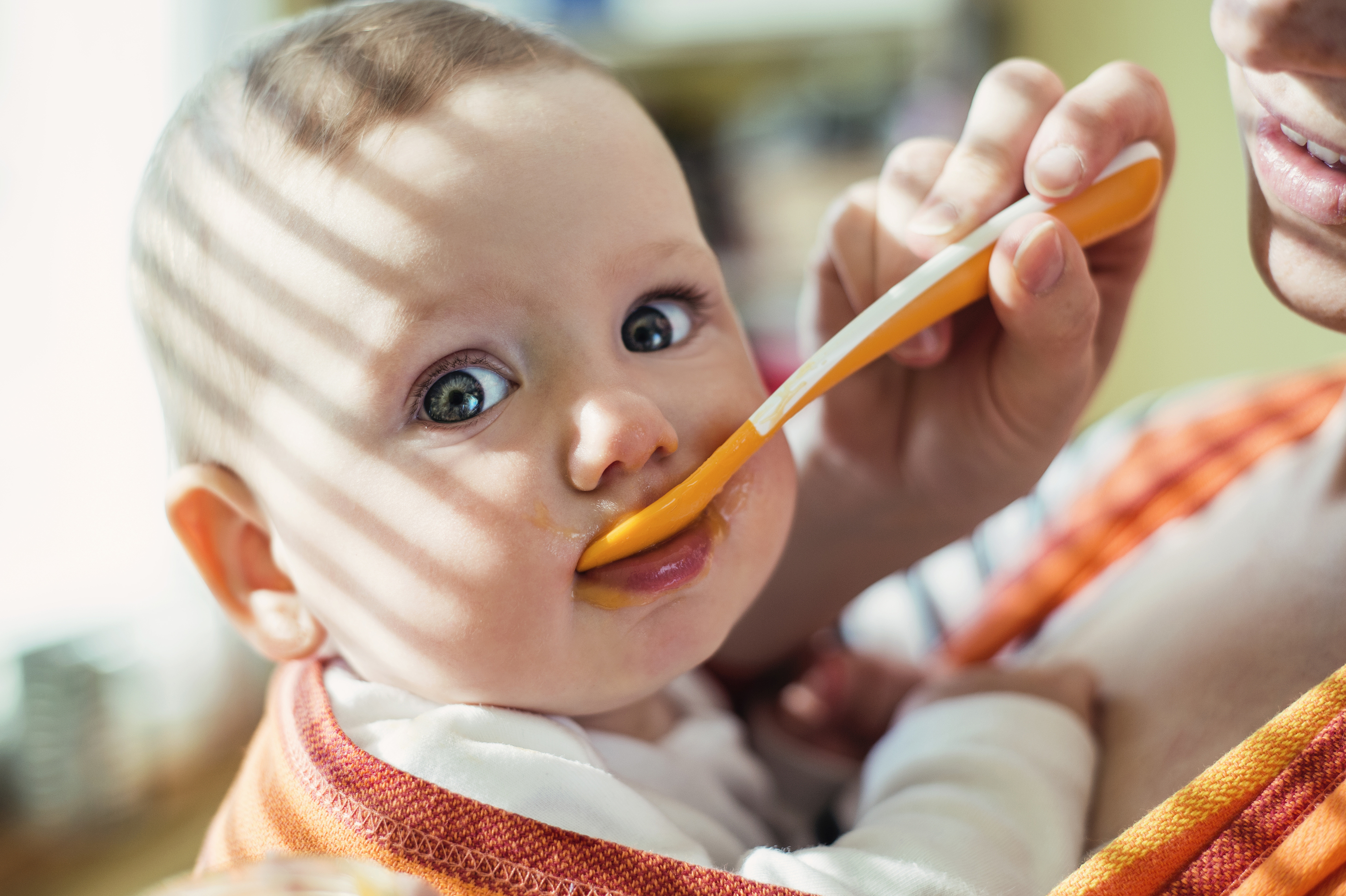 How Many Jars Baby Food  Month Old