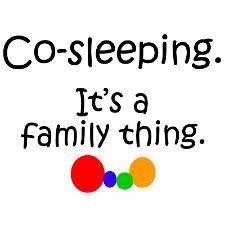 Co Sleeper Crib Bassinet