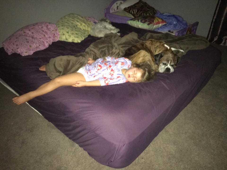 Check Out These Amazing Co Sleeping Options